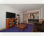 700sf South-facing 1 bedroom + Storage unit @ THE INDUSTRY CONDO - NO TRANSFER TAX